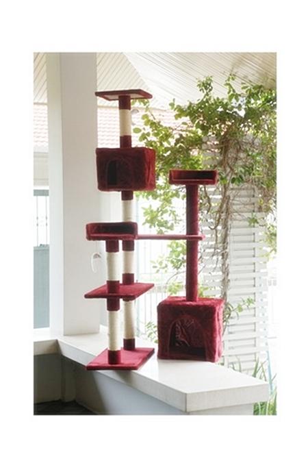 SALE คอนโดแมว C708 สีแดง (ส่งฟรี)