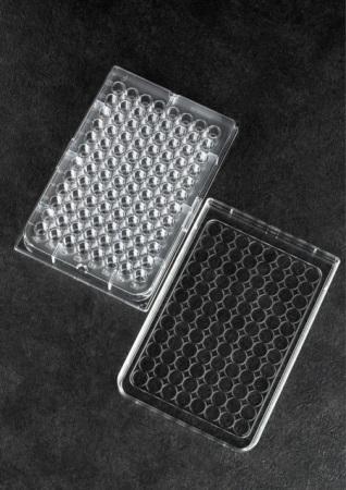 ถาดหลุม Microtiter plate (Cell culture plate)