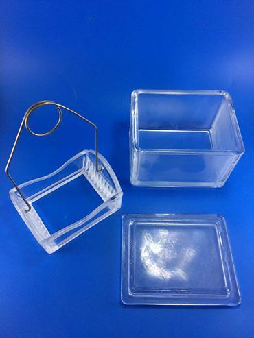 โถย้อมสไลด์ แบบ แนวนอน Staining tray