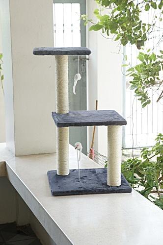 SALE คอนโดแมว C3 (ส่งฟรี)