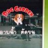 """ร้าน """" Dog Garden """" ของน้องดาด้า ที่จ.ปราจีนบุรีค่ะ ^^"""