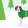 วิธีดูแลสุนัขในหน้าหนาว
