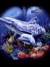 ลายสกรีนฮาฟโทนแนวปลา