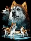 ลายสกรีนฮาฟโทนแนวหมาป่า