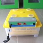 ตู้ฟักไข่อัตโนมัติ AUTO-24 (จัดส่งฟรีทั่วประเทศ)