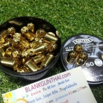 Blank Revolver Cartridges Walther.380RK 50 Pcs.