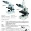 Compound Microscope กล้องจุลทรรศน์ คอมพาวด์ Carton thumbnail 2