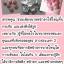 ฮอร์โมนจีน อกอึ๋ม ฮอร์โมนยาจีน เพิ่มหน้าอก thumbnail 4