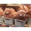 ตุ๊กตา วีแบแบร์ We bare bears (ยืน) thumbnail 4