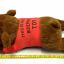 กระเป๋าน้ำร้อน ตุ๊กตาหมี ขายดี thumbnail 3