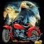 ลายสกรีนฮาฟโทนแนวจักรยานยนต์ thumbnail 1