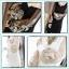 เดรสสั้นแขนยาว สวยหรู กับแฟชั่นเรียบหรู แขนเสื้อแบบซีทรู ตกแต่งด้วยลูกไม้สีทอง thumbnail 1