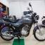 ( ฟรีดาวน์ ) Suzuki GD110 (ใหม่) ยังไม่จดทะเบียน thumbnail 3