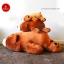 หมีหลับตัวใหญ่ นุ่มนิ่ม ใยไมโครนุ่ม สำเนา thumbnail 2
