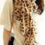 ผ้าพันคอชีฟอง ลายแมวสีน้ำตาล ( รหัส P22 ) thumbnail 1
