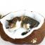 เบาะนอนสุนัขและแมวสีน้ำตาล thumbnail 1
