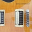 Pre Order Gibson stander LP นกีตาร์ไฟฟ้า สีเหลืองอำพัน แค่ชื่อก็บ่งบอกถึงคุณภาพ thumbnail 6