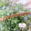 ลูกไม้แต่ง สีน้ำตาลสว่าง แบ่งขายเป็นหลา (90 ซม.) thumbnail 2