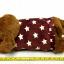 กระเป๋าน้ำร้อน ตุ๊กตาหมี ขายดี thumbnail 2