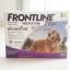 Frontline Plus สุนัข 20-40 kg. (1 หลอด 255.- / 3 หลอด 725.-) thumbnail 1