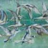 ภาพฝูงนกนางนวล สีอะคริลิค A flock of seagulls acrylic color