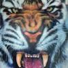 ่หน้าเสือ