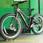 FAT Bike Xds brand 27 speed Shimano Alivio/DEORE