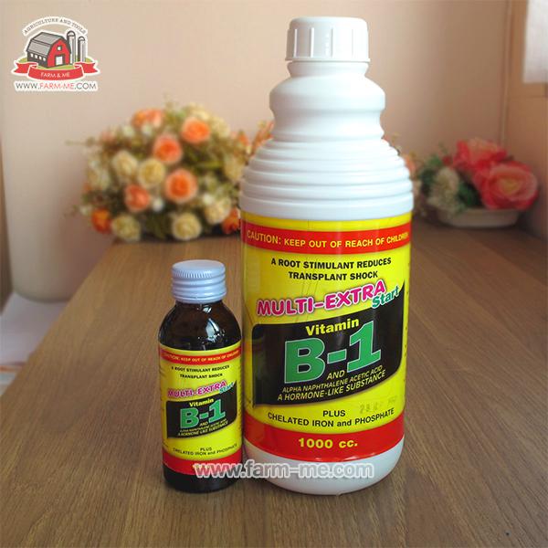 วิตามิน B1