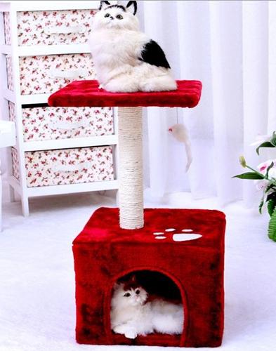 คอนโดแมว C1