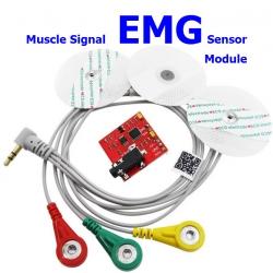 Muscle signal sensor EMG Sensor