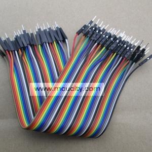 สาย (2.54mm) 40 pin to 40 pin (Male-Male) 20 cm