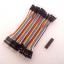สาย (2.54mm) 40 pin to 40 pin (Male-Male) 10 cm thumbnail 1