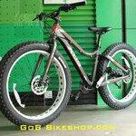FAT Bike XDS